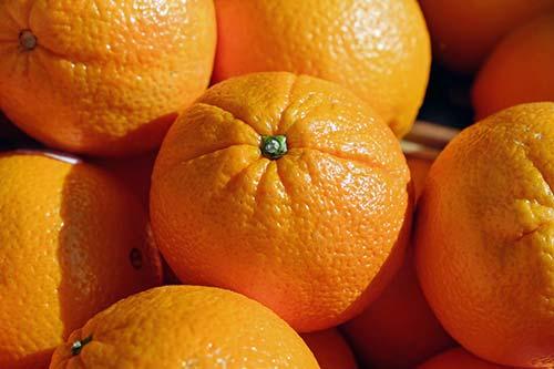 Glossar-Orangenblütenwasserphoto